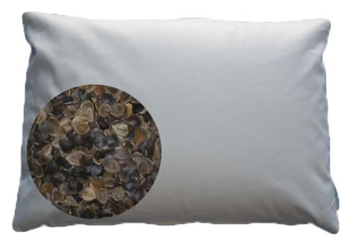 Organic Buckwheat Pillow by Beans72