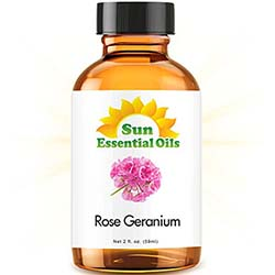 Rose Geranium (2 fl oz) Best Essential Oil