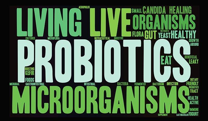 Best way to take probiotics
