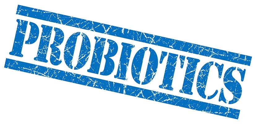 probiotic brands