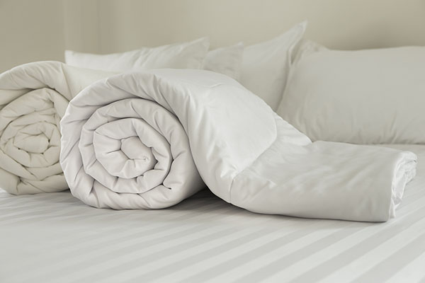 warmest down comforter