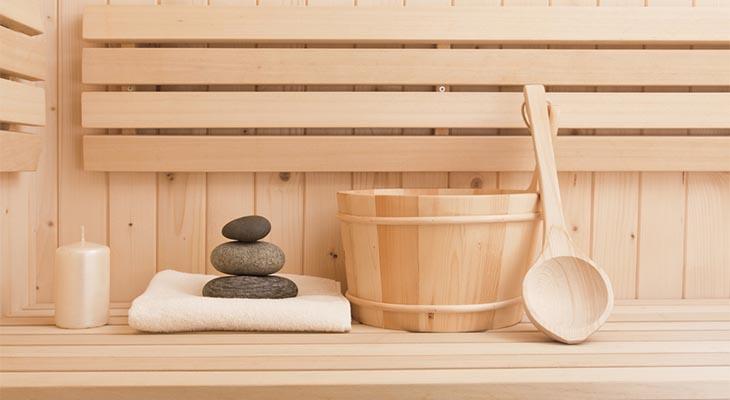 sauna heaters for sale